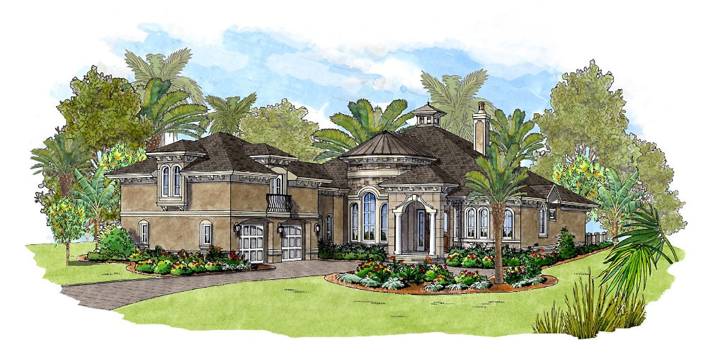 royal palm idea